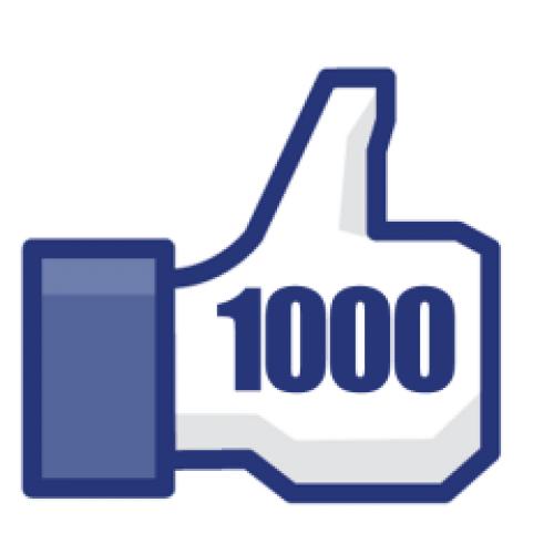 donations top 1 000
